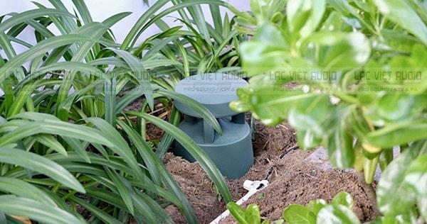 Nhược điểm của loa sân vườn Bose là giá thành cao
