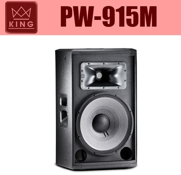 Loa sân khấu KING PW-915M